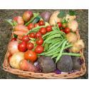 Waterland Organics