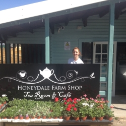 Honeydale Farm Shop, Tearoom & Cafe