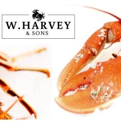 W Harvey & Sons Shellfish Merchants