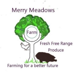 Merry Meadows Farm