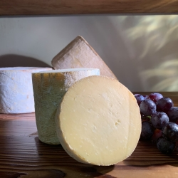 The Swaledale Cheese Co