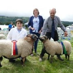 Llwyn-on Farm Produce