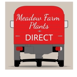 Meadow Farm Nursery & Tea Room