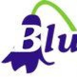 Bluebell Organics