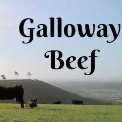 Netherstreet Farm Galloway Beef