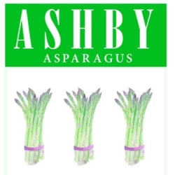 JL Ashby & Co Ltd (Asparagus)