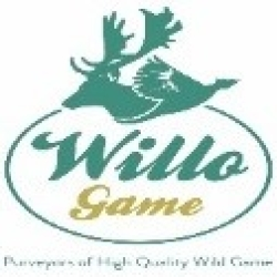 Willo Game