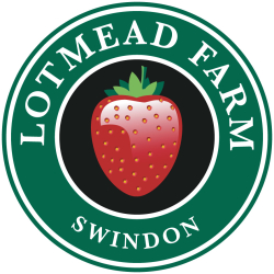 Lotmead Farm Shop & PYO