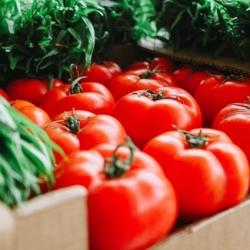 Adey's Farm (Fresh-n-Local Farmers' Market)
