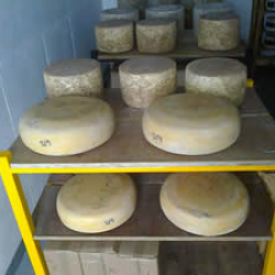 Country Cheeses