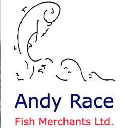 Andy Race