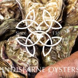 Lindisfarne Oysters