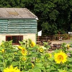 Kinver Edge Farm Shop