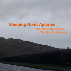 Sleeping Giant Apiaries