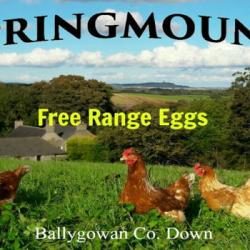 Springmount Farm