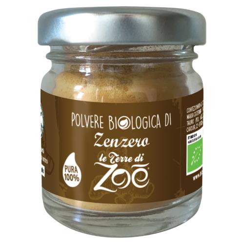 Organic Ginger Powder 15gr