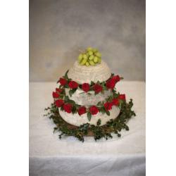Celebration Cheese Cake
