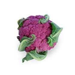 Purple Cape Cauliflower Seeds