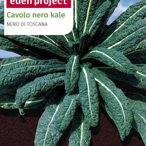 Franchi - Eden Project Cavolo Nero Kale