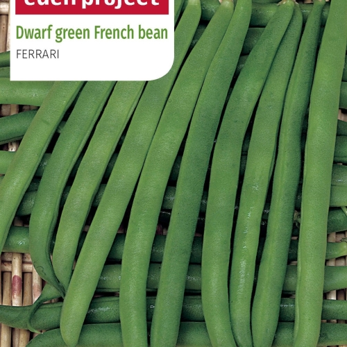 Franchi - Eden Project Dwarf French Bean Ferrari