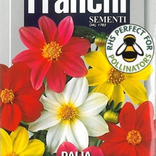 Franchi - Dahlia Semplice