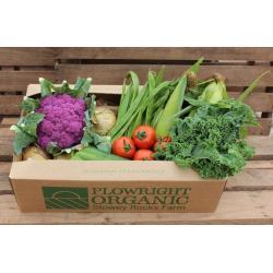 Large veg box