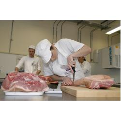 Introduction to Butchery