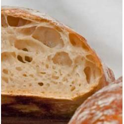 Sourdough online course