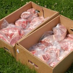 100% Grass-Fed Half Lamb Box