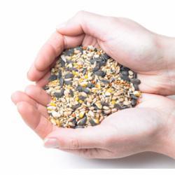 Mixed Bird Seed 25kg
