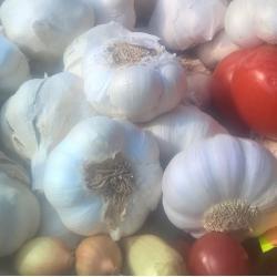 Villet of Barrington Garlic