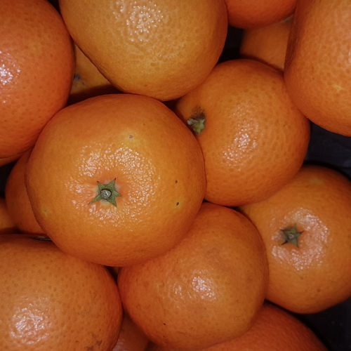 ORGANIC 500g CLEMENTINES