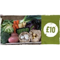 Medium Vegetable Box