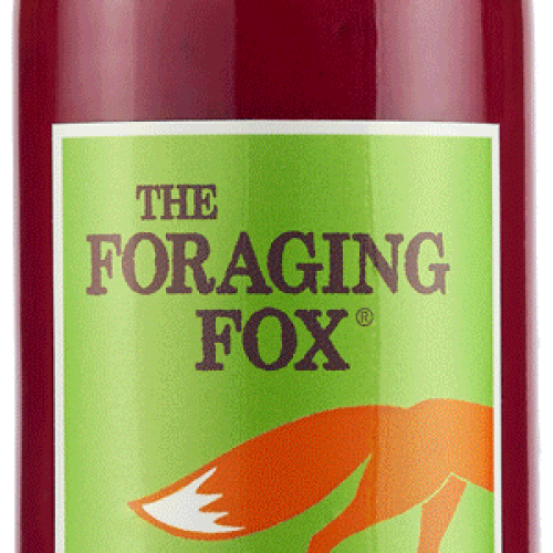 The Foraging Fox Original Beetroot Ketchup (6 x 255g) Retail Bottle