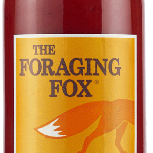The Foraging Fox Hot Beetroot Ketchup (6 x 255g) Retail Bottle