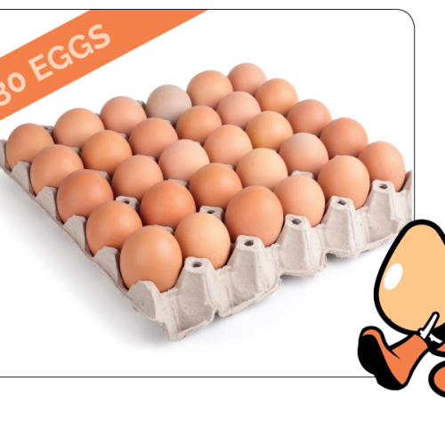 30 Free Range Eggs