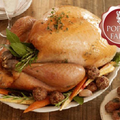 10kg Bronze Free Range Turkey