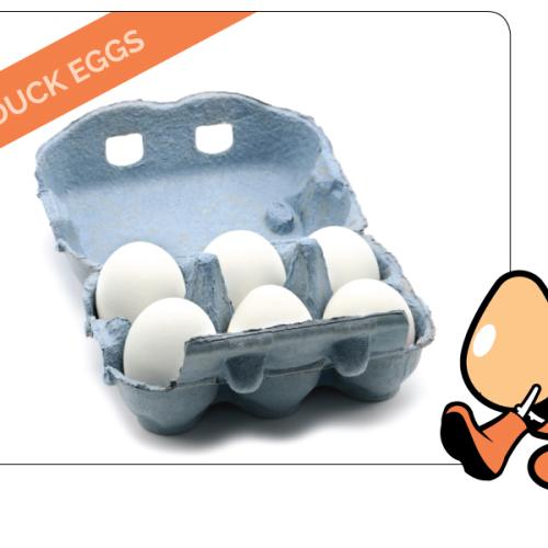 6 Free Range Large Duck Eggs