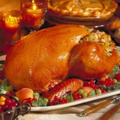 8 KG Organic Bronze Free Range Reared Turkey