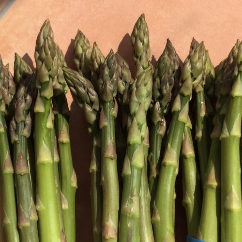 1 bunch of Asparagus spears