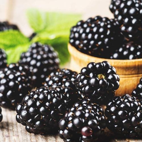 1st class Blackberries