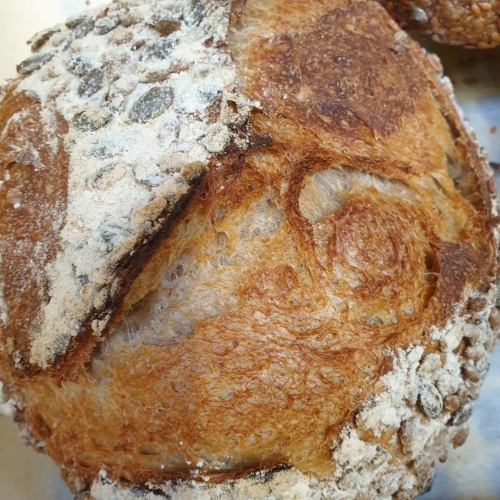 CornishSourdoughBakery - Seeded Traditional White Sourdough