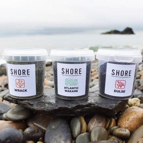 Trio of organic - seaweed  Wrack, Atlantic Wakame and Dulse