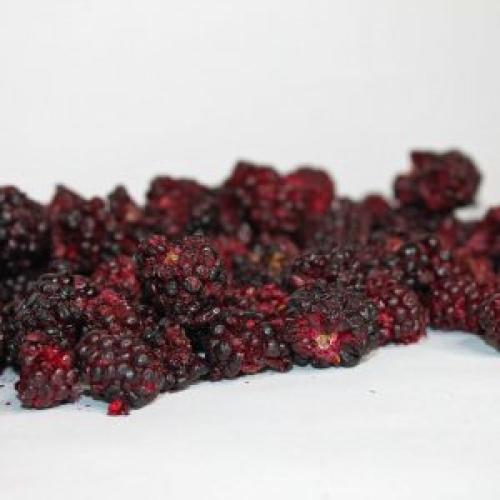 Freeze Dried Whole & Broken Blackberries