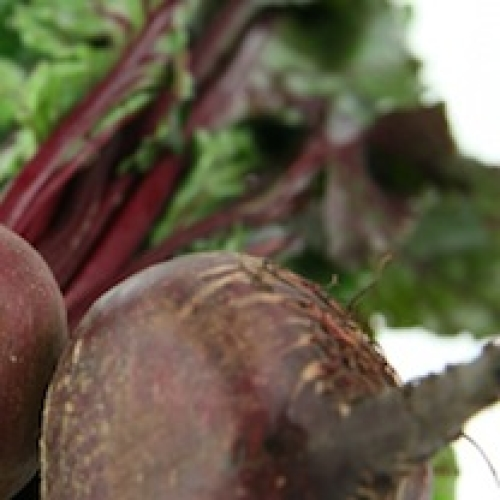 BEETROOT /T