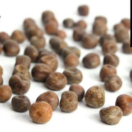 HODMEDOD'S Carlin Peas, Black Badger, Organic