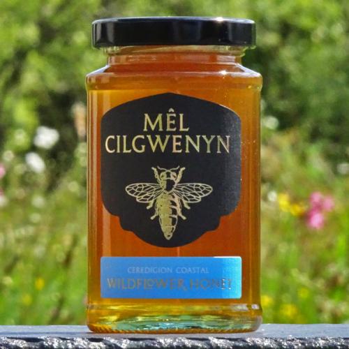 Ceredigion Coastal Wildflower Honey