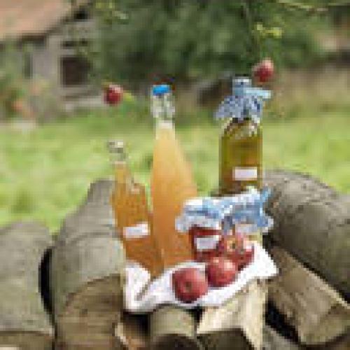 Cider gift pack