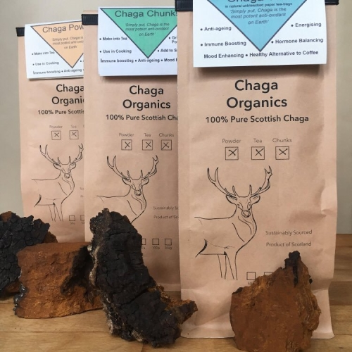 Wild Harvested Pure Scottish Chaga