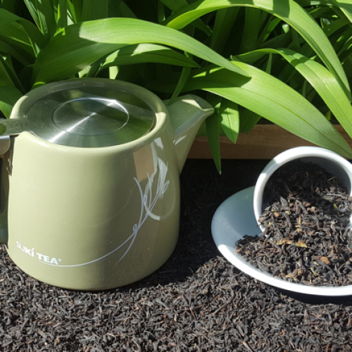Large Leaf Darjeeling Tea